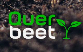 queerLogo