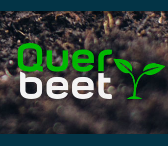 queerLogo
